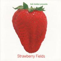 CD - Various Artists Strawberry Fields  -  Bob Belden Presents