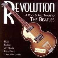 CD - Various Artists Revolution - A Rock & Roll Tribute To The  Beatles