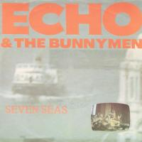 SINGLE - Echo & Bunnymen Seven seas / All you need is love