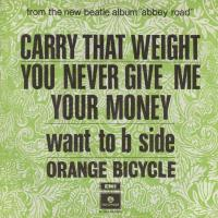 SINGLE - Orange Bicycle Carry that weight