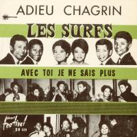 SINGLE - Les Surfs Adieu Chagrin (There's a place)